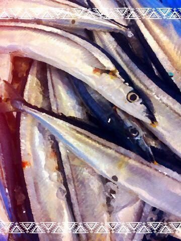秋刀魚の季節です(●?´ω`●?)