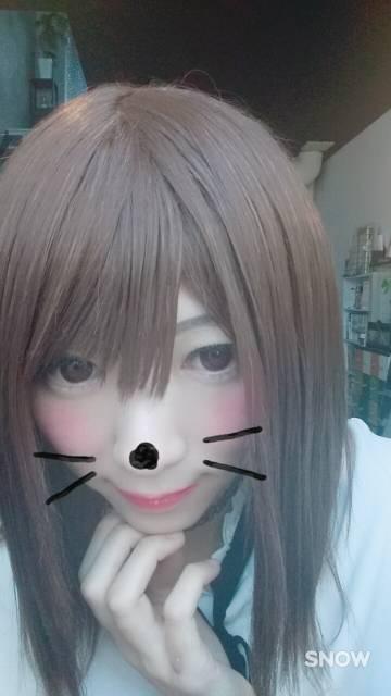 ネコちゃん好きなの( ´,_ゝ`)