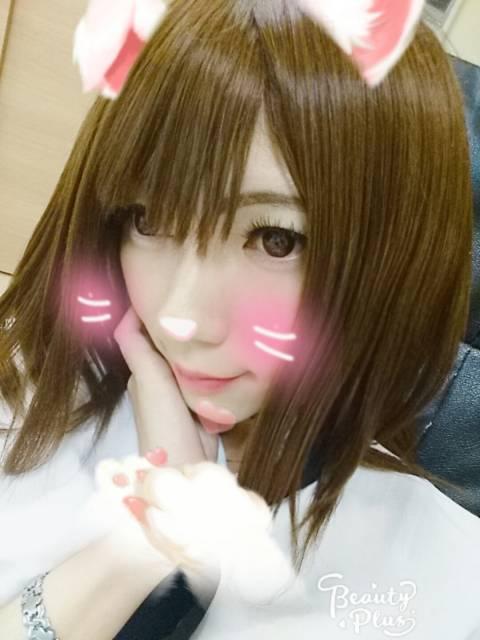 ネコちゃん五反田に到着なの((o(^∇^)o))!