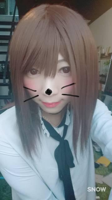 ネコちゃんなの(ノ´∀`*)!