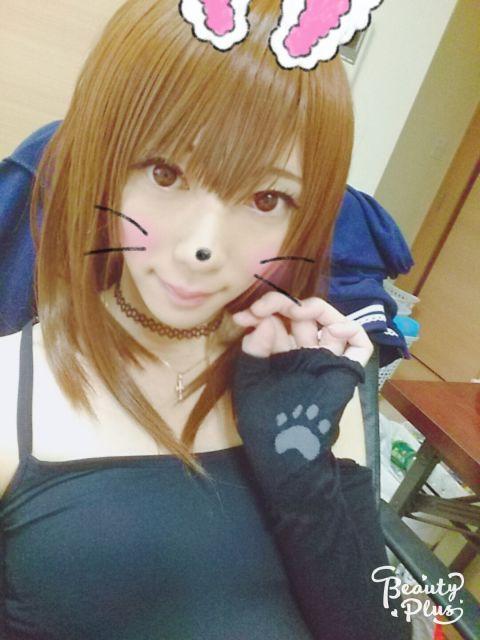 ネコちゃんなの(о´∀`о)ノ♀
