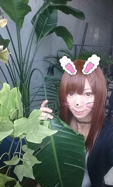 13時頃からのオニィに感謝なの(*´∀`)ノ♪合体しちゃったねヾ(^^ヘ)!