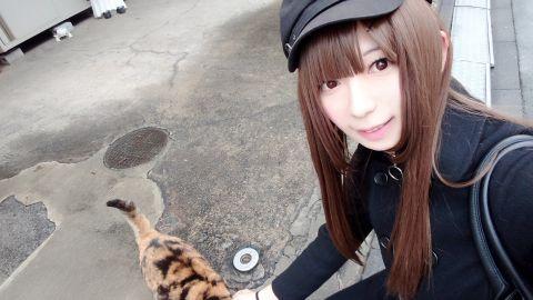 猫ちゃんカワイイ( ^ω^ )♪