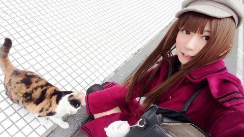 猫ちゃん大好き(ノ´ー)ノ♪