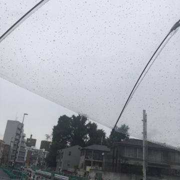 6月の雨??