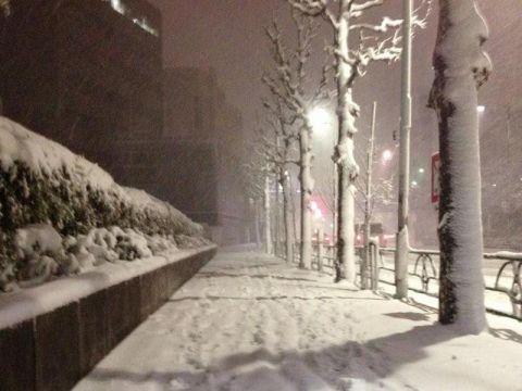 雪雪雪雪(* ̄ー ̄)