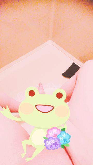 おはようございます(o^^o)