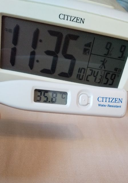 今日の体温☆