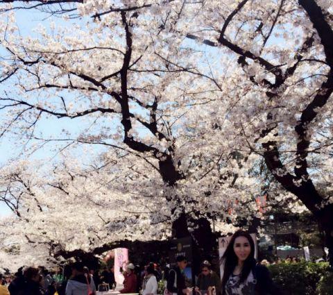 桜満開の上野公園